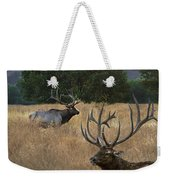Elk Sunset Weekender Tote Bag