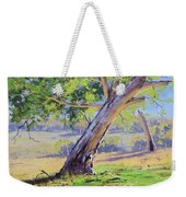 Eucalyptus Tree Australia Weekender Tote Bag