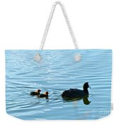 Eurasian Coot And Offspring In Ria Formosa. Algarve, Portugal Weekender Tote Bag