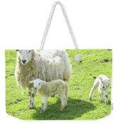 Ewe With Lambs Weekender Tote Bag