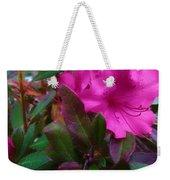 Fall Beauty Weekender Tote Bag by Robert Knight