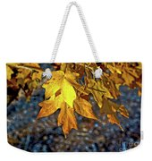 Fall Has Sprung Weekender Tote Bag