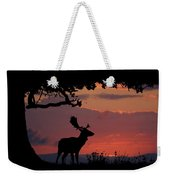 Fallow Stag At Sunset Weekender Tote Bag