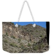 Family Of Saguaro Weekender Tote Bag