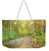 Fawn Drinking From Stream Weekender Tote Bag