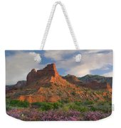 Feather Dalea, Caprock Canyons State Weekender Tote Bag