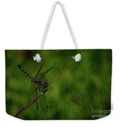 Female Blue Dasher Dragonfly Weekender Tote Bag