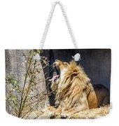 Fierce Yawn Weekender Tote Bag by Kate Brown