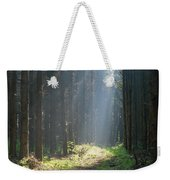 Forrest And Sun Weekender Tote Bag
