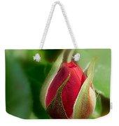 Garden Series - I V Weekender Tote Bag
