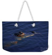 Gator And Snake Weekender Tote Bag by Tom Claud