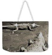 Gator  Park Residence Weekender Tote Bag