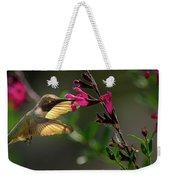 Glowing Wings Of A Hummingbird Weekender Tote Bag