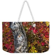 Gnarled Tree Trunk - Dezadeash Lake - Yukon Territory  Weekender Tote Bag
