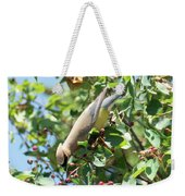 Gotta Have It Weekender Tote Bag by Sally Sperry