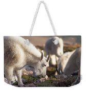 Grazing On Mount Evans Weekender Tote Bag