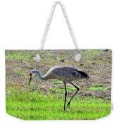 Grazing Sand Hill Crane Weekender Tote Bag
