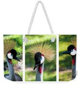 Grey Crowned Crane Gulf Shores Al Collage 2 Triptych Weekender Tote Bag