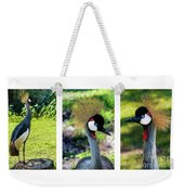 Grey Crowned Crane Gulf Shores Al Collage 6 Triptych Weekender Tote Bag