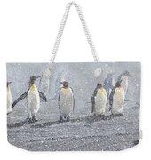 Group Of King Penguins In The Snow Weekender Tote Bag by Alan M Hunt