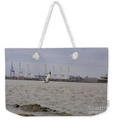 Gull In Flight On New Jersey Bay Weekender Tote Bag