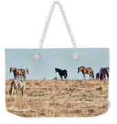 Hanging With Family And Friends - South Steens Wild Horses Weekender Tote Bag by Belinda Greb