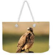 Hawk On The Edge Of A Field Weekender Tote Bag