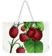 Hepstine Raspberries Hanging From A Branch Weekender Tote Bag