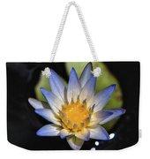 Hidden Jewel Weekender Tote Bag by Laura Roberts