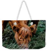 Highland Cow Eating Close Up Weekender Tote Bag by Scott Lyons