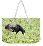Horse Print 828 Weekender Tote Bag