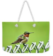 Hummingbird On A Fence Weekender Tote Bag