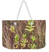 In Tall Grass Weekender Tote Bag by Whitney Goodey