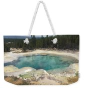 Inviting.... But Deadly. Weekender Tote Bag