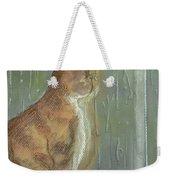 It's Raining Outside Weekender Tote Bag