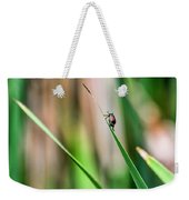 Japanese Beetle Climbs Plant Weekender Tote Bag