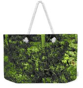 Lake Pleasant Az 043a Weekender Tote Bag