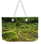 Landscape At Torc Waterfalls Weekender Tote Bag
