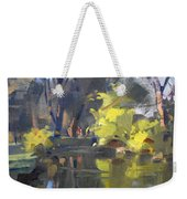 Last Suntouches In Ellicott Creek Park  Weekender Tote Bag