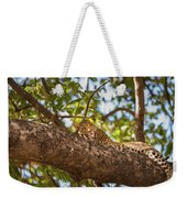 Lc13 Weekender Tote Bag by Joshua Able's Wildlife