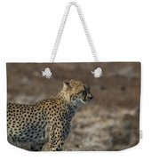 LC5 Weekender Tote Bag by Joshua Able's Wildlife