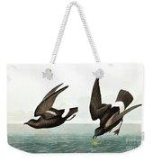 Least Stormy Petrel, Thalassidroma Pelagica By Audubon Weekender Tote Bag