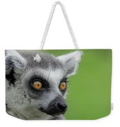Lemur Orange Eyes Weekender Tote Bag by Scott Lyons