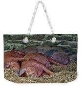 Let Sleeping Pigs Lie Weekender Tote Bag by PJ Boylan