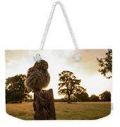 Little Owl Sunset Weekender Tote Bag