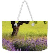 Lone Tree In Lavender And Mustard Fields Weekender Tote Bag by Brian Jannsen