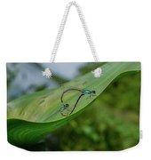 Love On A Leaf Weekender Tote Bag