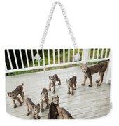 Lynx Family Portrait Weekender Tote Bag by Tim Newton