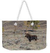 ME7 Weekender Tote Bag by Joshua Able's Wildlife