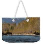 ME8 Weekender Tote Bag by Joshua Able's Wildlife